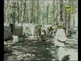 Как мы с Марцинкевичем в табор ездили Рен ТВ