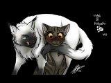 Коты Воители и волки в анимэ